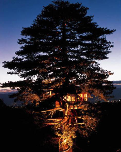 Sky High Treehouse