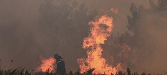 Η καταστροφική φωτιά στον Βαρνάβα. Φωτογραφία: EUROKINISSI/ΣΩΤΗΡΗΣ ΔΗΜΗΤΡΟΠΟΥΛΟΣ