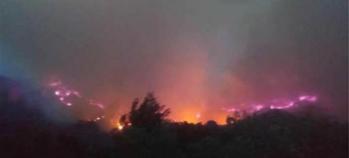 Μεγάλη φωτιά στην Ηλεία - Εκκενώθηκαν σπίτια