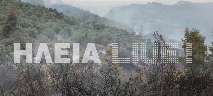 Μεγάλη πυρκαγιά στην Ηλεία/ Φωτογραφία: ilialive.gr