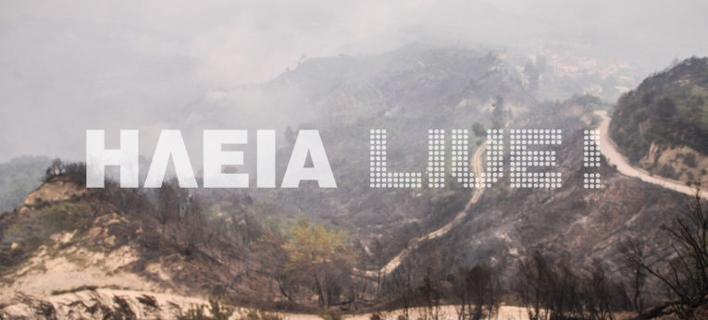 Φωτογραφία: ilialive.gr