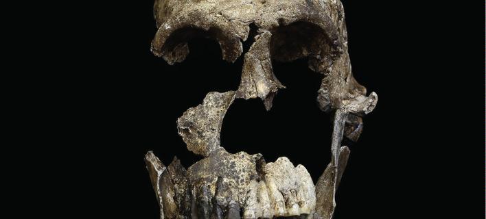 Homo naledi: Ο άγνωστος συγγενής του ανθρώπου -Νέα ανακάλυψη [εικόνα]
