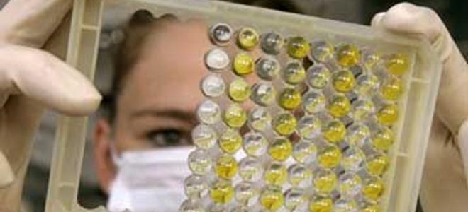 ιός της γρίπης, γρίπη των πτηνών, Ολλανδία, επιστήμονες, παγκόσμια υγεία, ιός, φ