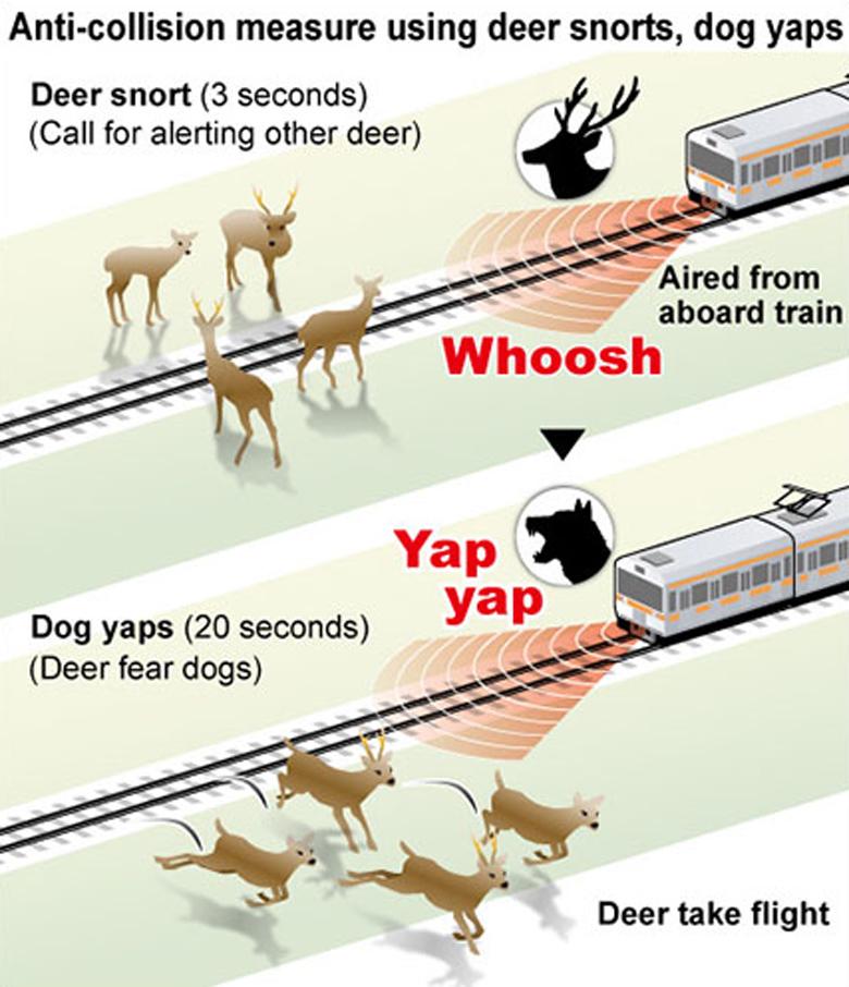 Ιαπωνία: Τρένο... γαβγίζει  για να διώχνει τα ελάφια από τις ράγες