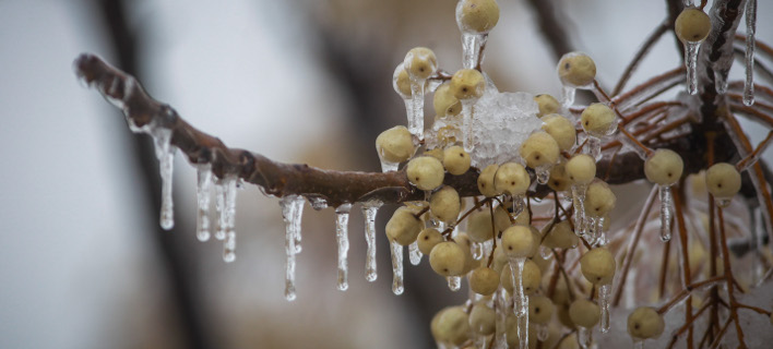 Πέφτει η θερμοκρασία την Τρίτη/ Φωτογραφία: EUROKINISSI- ΘΑΝΑΣΗΣ ΚΑΛΛΙΑΡΑΣ