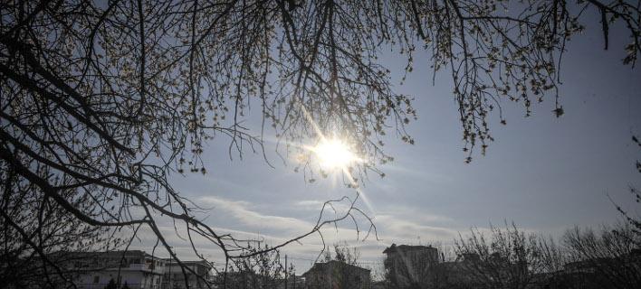 Ανθισμένες αμυγδαλιές στα Τρίκαλα (Φωτογραφία: EUROKINISSI/ΘΑΝΑΣΗΣ ΚΑΛΛΙΑΡΑΣ)