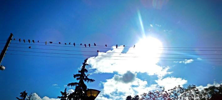Ανεβαίνει η θερμοκρασία σήμερα (Φωτογραφία: EUROKINISSI/ ΓΙΩΡΓΟΣ ΚΟΝΤΑΡΙΝΗΣ)