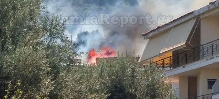 ΦΩΤΟΓΡΑΦΙΑ: lamiareport.gr