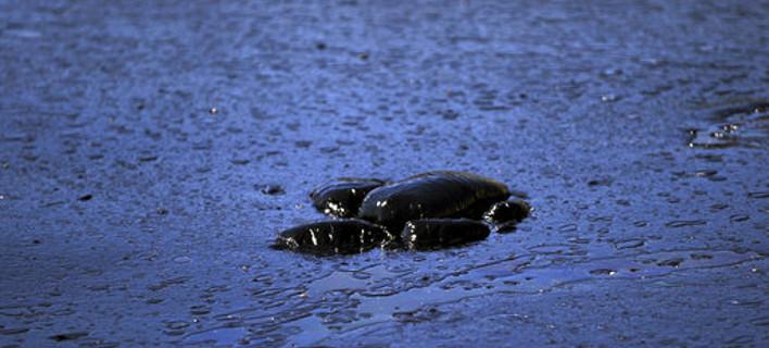 Νεκρή θαλάσσια χελώνα καλυμμένη με πίσσα στη Σαλαμίνα. AP Photo/Petros Giannakouris