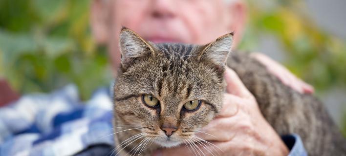 Ενας ηλικιωμένος κρατάει τη γάτα του, Φωτογραφία: Shutterstock/By Budimir Jevtic