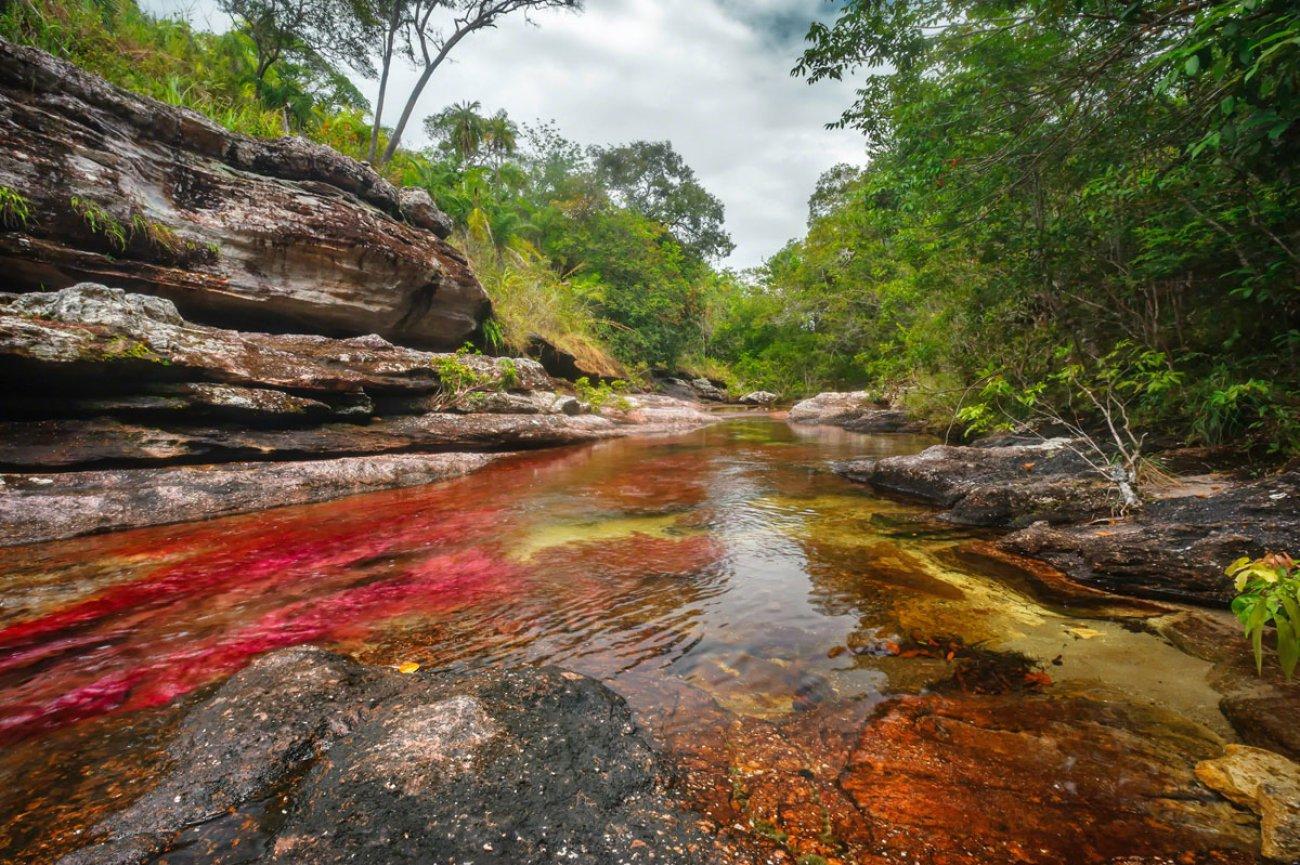 Κάνο Κριστάλες: Το πολύχρωμο ποτάμι της Κολομβίας