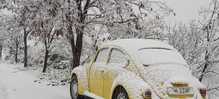 χιόνια στη Φθιώτιδα/Φωτογραφία: lamiareport.gr
