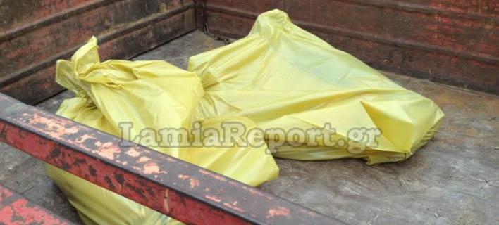 Σοκ στη Λαμία: Μαζική θανάτωση αδέσποτων σκύλων [εικόνες & βίντεο]