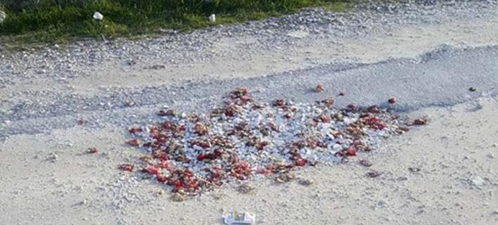 Λάρισα: Εκλεισαν τις λακκούβες στο δρόμο με... σπασμένα πιάτα και γαρύφαλλα [εικόνες]