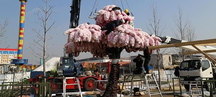 Θα έχει λουλούδια όλο το χρόνο!