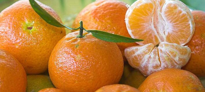 Φρούτα συνολικού βάρους 10.712 κιλών, φωτογραφία: pixabay
