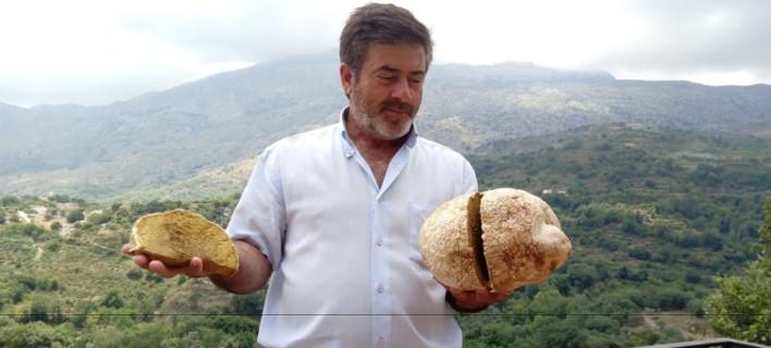 Βρήκαν μανιτάρι σχεδόν 4 κ. στην Κρήτη (Φωτογραφία: cretalive)