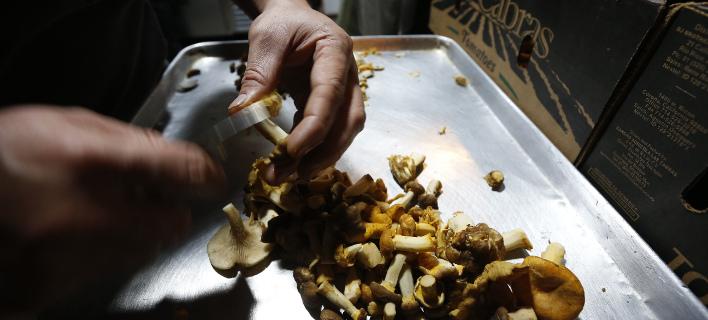 Πέθανε έπειτα από γεύμα με μανιτάρια/ Φωτογραφία αρχείου: AP- Marco Ugarte