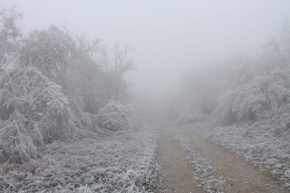 Image result for χιονοθυελλα