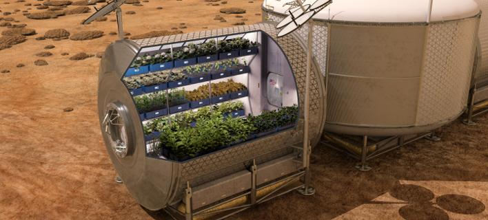 Ποιες καλλιέργειες μπορούν να αναπτυχθούν στον Αρη – Βρήκαν τη λύση οι ερευνητές