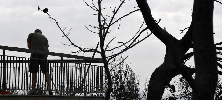 Κάτοικος στο Μάτι Αττικής-Φωτογραφία: Intimenews/Μιχάλης Βαρακλάς
