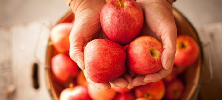 Οι 6 τροφές που προτείνουν οι διαιτολόγοι: Αδυνατίζουν και διώχνουν την πείνα [λίστα]