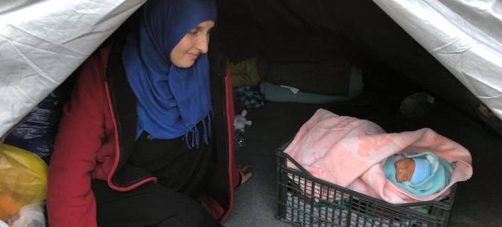 Λέσβος -Η φωτογραφία του 4 μηνών προσφυγόπουλου που κοιμάται σε τελάρο για φρούτα [εικόνες]
