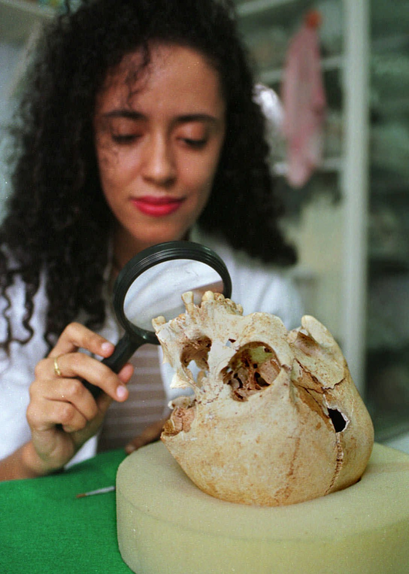 Επιστήμονας εξετάζει το κρανίο της Λουζία (Φωτογραφία αρχείου: AP/ RENZO GOSTOLI)
