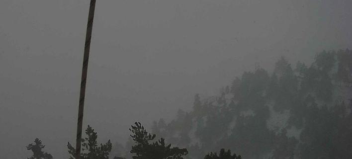 Η χιονόπτωση από το καταφύγιο «Μπάφι» / Φωτογραφία: forecastweather.gr