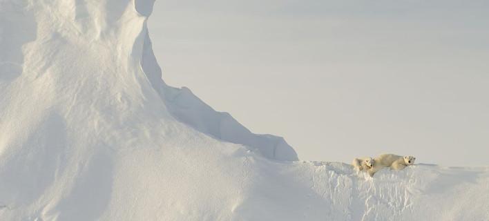 Μοναδικά καρέ -Οι φωτογραφίες που διακρίθηκαν στο διαγωνισμό του National Geographic [εικόνες]