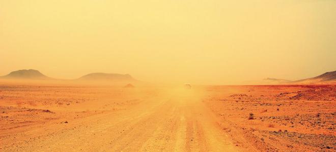 H τρομακτική «σιωπηλή επιδημία» που εξαπλώνεται στις ερήμους της νοτιοδυτικής Αμερικής και μπορεί να αποβεί θανατηφόρα