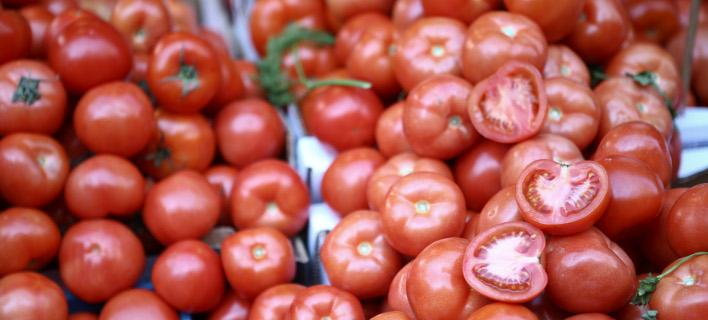 ντομάτες/Φωτογραφία: IntimeNews
