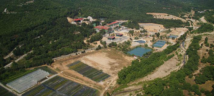 Εκδόθηκαν τελικά οι άδειες για την Ολυμπιάδα / Φωτογραφία: Hellas Gold