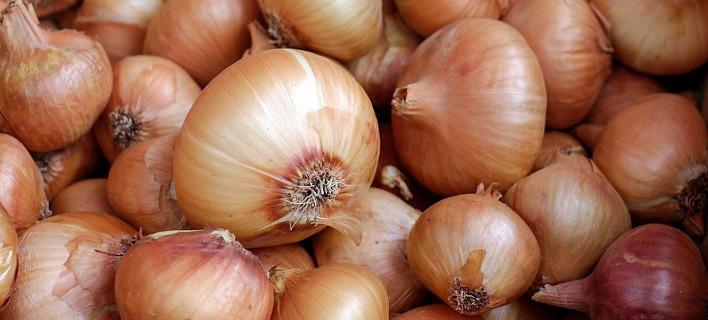 Κρεμμύδια, φωτογραφία: pixabay
