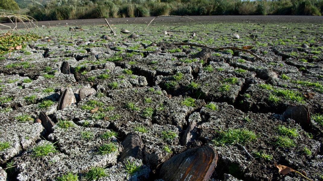 Οικολογική καταστροφή στην λίμνη Παμβώτιδα των Ιωαννίνων, λόγω ανομβρίας - Intimenews/ΠΑΠΠΑ ΠΑΡΑΣΚΕΥΗ