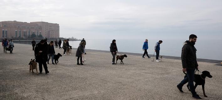 Βόλτα στο λιμάνι της Θεσσαλονίκης / Φωτογραφία: Sooc