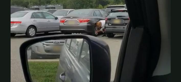Παρκάρισμα- καταστροφή/ Φωτογραφία: Facebook