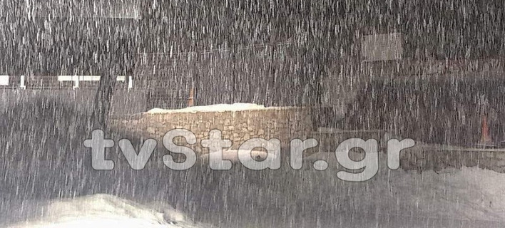 Εντονη χιονόπτωση στον Παρνασσό [εικόνες & βίντεο]