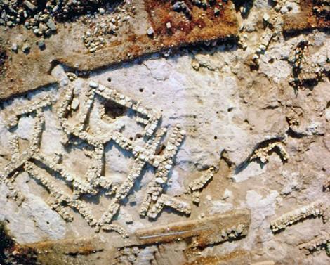 Η ανασκαφή περιλαμβάνει μέχρι στιγμής 26 ταφικά κτίρια 45-150 τ.μ. και πέντε ταφικούς λάκκους, οριζόμενους από ακανόνιστους λίθους ή μικρούς τοίχους.