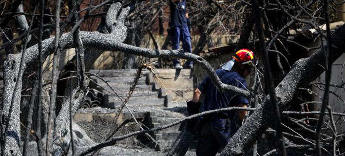 Πυρκαγιά-Μάτι/Φωτογραφία: Eurokinissi/ΓΙΑΝΝΗΣ ΠΑΝΑΓΟΠΟΥΛΟΣ