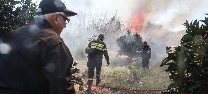 Φωτογραφία: Eurokinissi/ Φωτιά στο δάσος