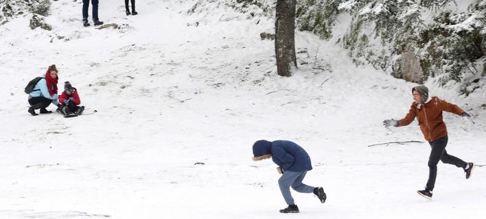 Χιονοπόλεμος στην Πάρνηθα -Φωτογραφία: ΑΠΕ-ΜΠΕ/ΑΛΕΞΑΝΔΡΟΣ ΜΠΕΛΤΕΣ/