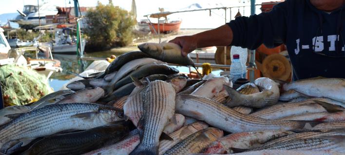 Η ΑΑΔΕ διαψεύδει ότι έκοψε πρόστιμο σε ψαρά, Φωτογραφία Αρχείου: Eurokinisii