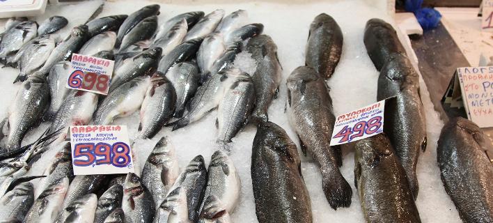 ψάρια/Φωτογραφία: Eurokinissi