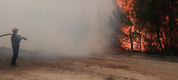 Τρεις πυρκαγιές ξέσπασαν στη Λάρισα -Σε συναγερμό η πυροσβεστική/ Φωτογραφία: Menelaos Myrillas / SOOC/ Αρχείο