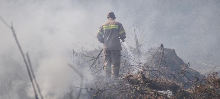 Μάχη με δύο πυρκαγιές δίνουν οι πυροσβέστες στη Θεσπρωτία (Φωτογραφία αρχείου: EUROKINISSI/ΓΙΩΡΓΟΣ ΕΥΣΤΑΘΙΟΥ)