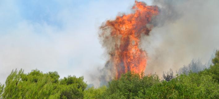 Πολύ υψηλός κίνδυνος πυρκαγιάς την Κυριακή -Δείτε σε ποιες περιοχές [εικόνα]