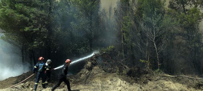 Πυρκαγιά/Φωτογραφία αρχείου: Eurokinissi/ΤΑΤΙΑΝΑ ΜΠΟΛΑΡΗ