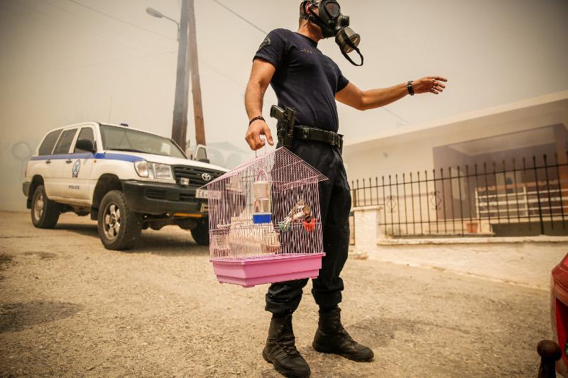 Αστυνομικός απομακρύνει κλουβί με πουλιά από τη φωτιά (EUROKINISSI/ ΣΤΕΛΙΟΣ ΜΙΣΙΝΑΣ)
