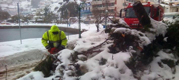 Πυροσβεστική, φωτογραφία: twitter.com/pyrosvestiki
